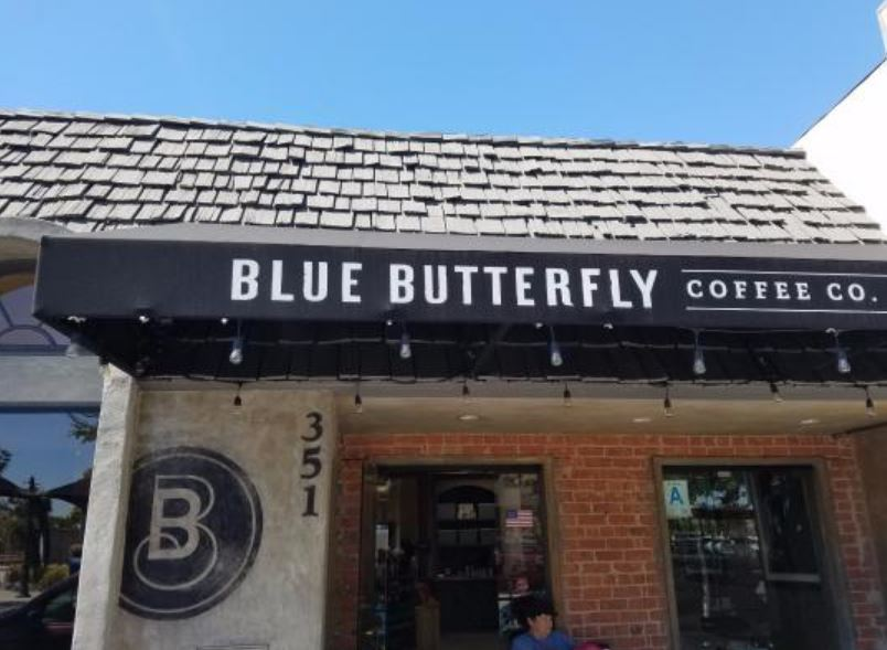 Blue Butterfly Co.